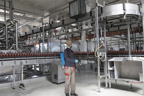 servicii ddd fabrici
