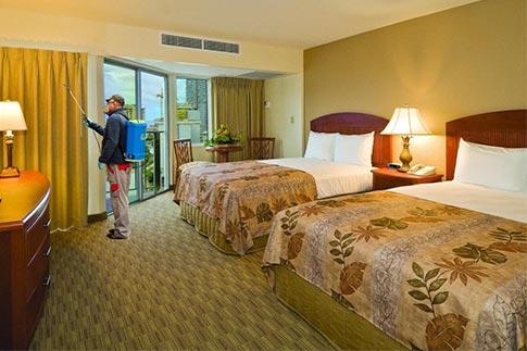 servicii ddd hoteluri