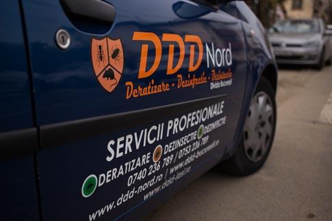 servicii ddd magazine
